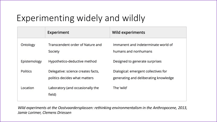 Slide:  Experimenting widely and wildly